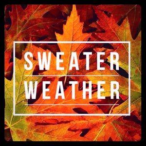 🍁 🍂 Sweater Weather 🍂 🍁 @VintageAnnie1